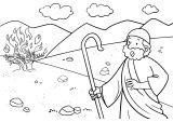 Kniha Exodus 2
