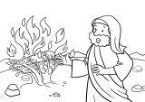 Kniha Exodus 5
