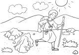 Kniha Genesis 13