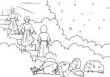 Kniha Genesis 14